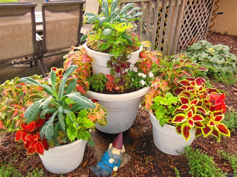 container gardening vegetables combining kale and coleus in a stacked tower container