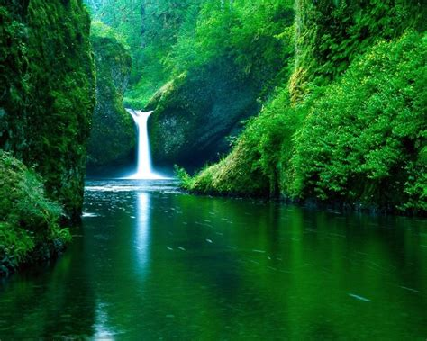Cool Fresh Image by Lovely Fresh Nature Background Wallpaper Cool