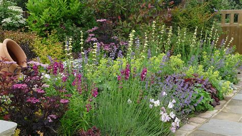 planting schemes for small gardens planting schemes landscape garden designers reading berkshire pete sims