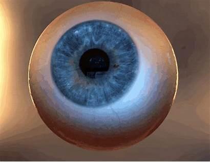 Eye Pupil Dilation Stimulating