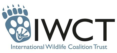 international wildlife coalition trust iwct the big give