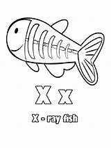 Coloring Ray Pages Fish Preschool Crafts Ide Tentang Temukan sketch template