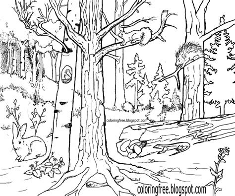 Coloring Wildlife by Free Coloring Pages Printable Pictures To Color