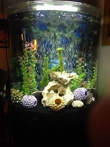 20 Gallon Fish Tank Lid With Light 30 Gallon Half Moon Fish Tank With Stand For Sale 125