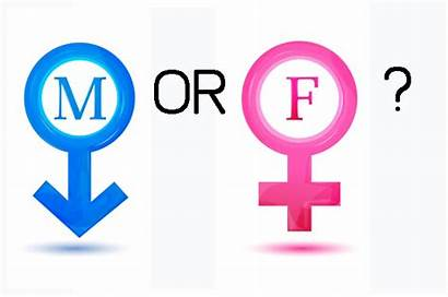Male Female Transgender Gender Trans Oppression Boy