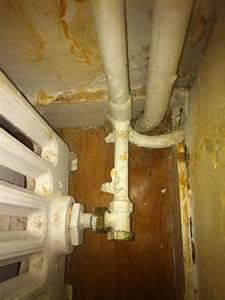 Fuite Radiateur Chauffage : fuite robinet radiateur en fonte ~ Medecine-chirurgie-esthetiques.com Avis de Voitures