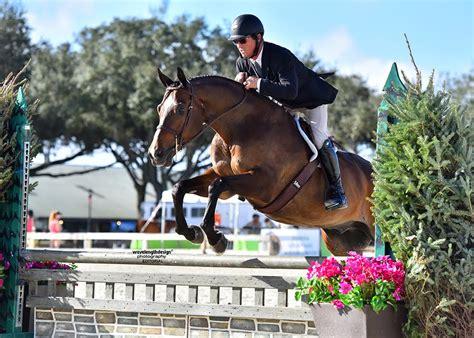 horse quarter circuit coast gold florida snapshots wavelength