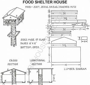 Project Working Idea: Birdhouse plans chickadee