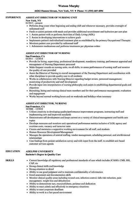 assistant director nursing resume sles velvet