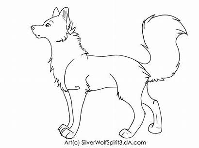 Lineart Canine Rq Deviantart Drawings Animals