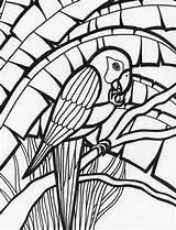 Coloring Parrot Pages Rainforest Amazing Adult Colouring Birds Parrots Adults Mosaic Bird Animal Colornimbus sketch template