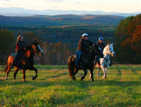 horse hill hackers farm ride horseback riding fall rides beach foliage horses maine quaker ridge drawn services trail