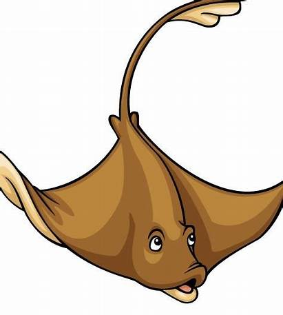 Clip Clipart Stingray Animals Sleek Cartoon Raja