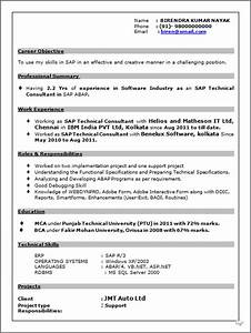 resume blog co resume sample of sap technical consultant With resume checking software