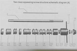 Two Class Squeezing Worm Structure Schematic Diagram A Of