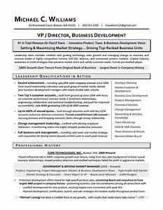 international business cv international business With resume development services