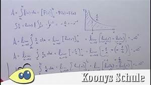 Stammfunktionen Berechnen : fl che unter 1 x und 1 x im vergleich uneigentliche ~ Themetempest.com Abrechnung