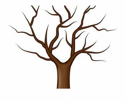 Tree Bare Clipart Trunk Clip Transparent Clipground