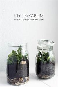 Sukkulenten Im Glas Pflanzen : diy terrarium kleiner garten im glas pflanzen garten basteln und terrarium ~ Eleganceandgraceweddings.com Haus und Dekorationen