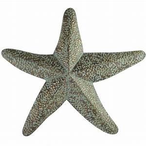 starfish wall decor from pier 1 coastal chic pinterest With starfish wall decor