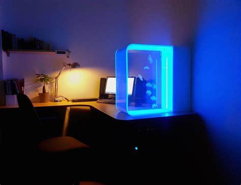 aquarium bureau un aquarium pour méduses magnifique
