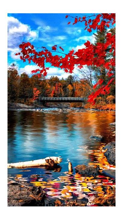 Autumn Scenery Nature Fall Lake Morning Gifs
