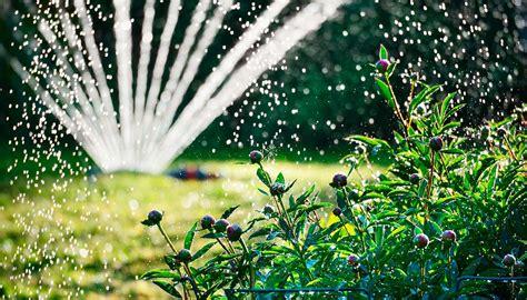 Garten Pflanzen Ohne Gießen by Gie 223 En Im Sommer 1a Garten Zitzelsberger In Ingolstadt