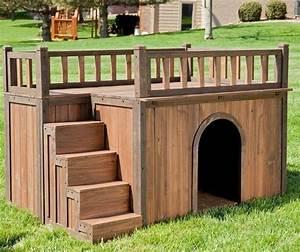 disenos de casas para perros With 2 story dog kennel