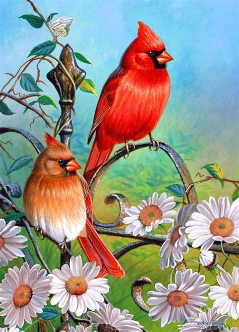 beautiful bird paintings freecreatives