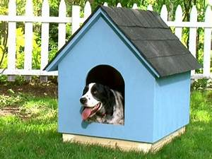 diy dog houses dog house plans aussiedoodle and With simple dog house