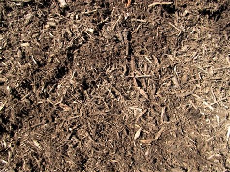 bark mulch mulching for landscaping and gardening haluchs landscaping products