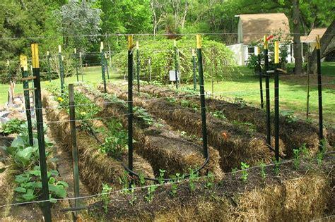 straw bale gardening fertilizer hay bale gardening the ultimate guide the hay bale garden