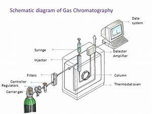 Diagrams Wiring   Gas Detector Circuit Diagram