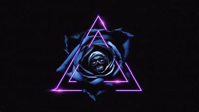 Skull Dark Triangles Rose Background Desktop 1080p