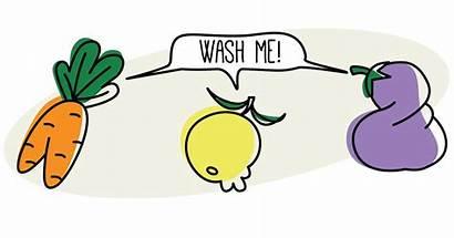 Vegetables Washing Produce Fruits Wash Fruit Washed