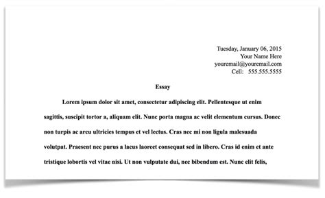 admissions essay instructions