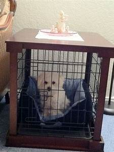 1000 images about knotty pine uses and ideas on pinterest With table over dog crate