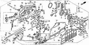 Honda Outboard Parts By Hp  U0026 Serial Range 45hp Oem Parts