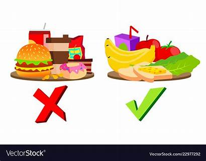 Unhealthy Healthy Vector Clipart Concept Project Lunchbox