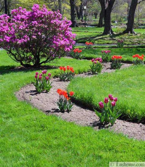 flowers and yard landscaping ideas 20 tulip bed