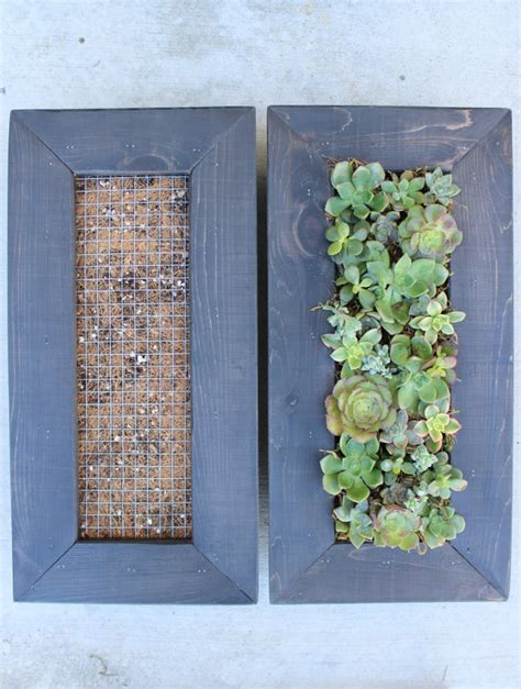 diy vertical hanging succulent living wall great by