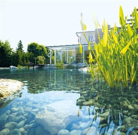 gartenarchitektur so bauen sie sich einen teich zum schwimmen welt
