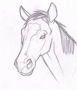 Horse Head by CBelmontIV on DeviantArt