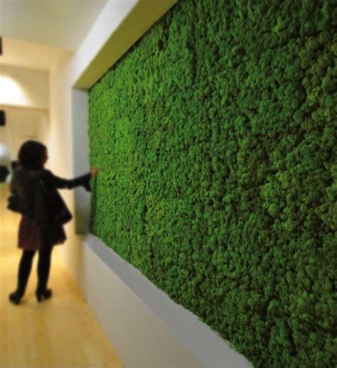 green wall ideas   interior  exterior   home