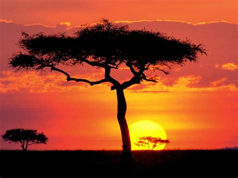 virtual world  blogging  beautiful sunsets pictures