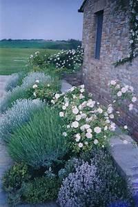les 25 meilleures idees de la categorie bordures de With exceptional amenagement jardin exterieur mediterraneen 6 mon jardin photo 11 mon massif mediterraneen
