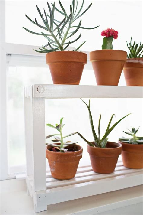 Window Ledge Plant Pots by Diy Build A Window Ledge Plant Shelf For Your Seedlings