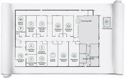 Cannabis Grow Marijuana Cultivation Medical Rooms Cleanroom