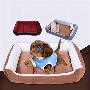 bedroom cute dog beds cute dog beds for medium dogs google With cute dog beds for medium dogs