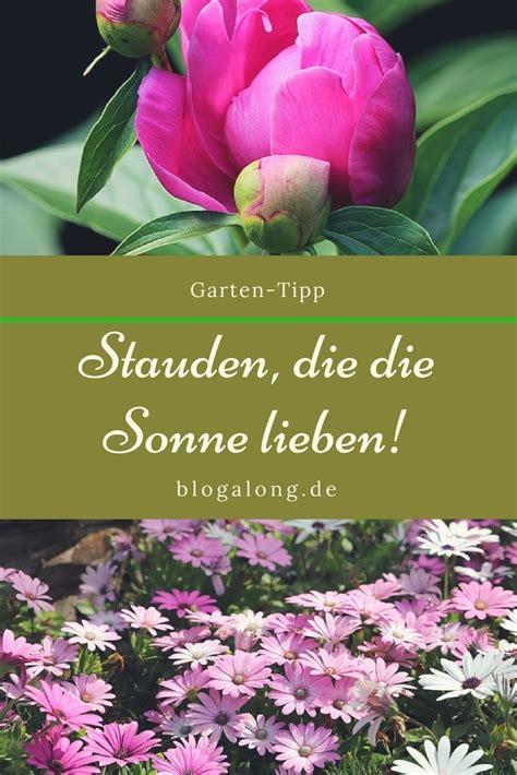 Garten Pflanzen Sonne by Hitzebest 228 Ndige Pflanzen Die Die Sonne Lieben Garten